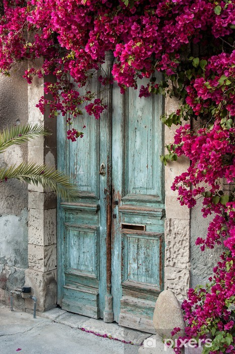 Old wooden door with bougainvillea in Cyprus Vinyl Wall Mural - iStaging