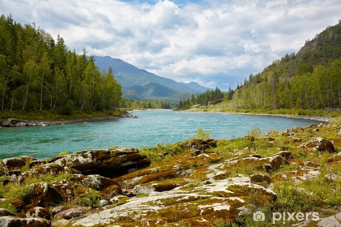 Fototapet av Vinyl Katun flod Altai - Teman