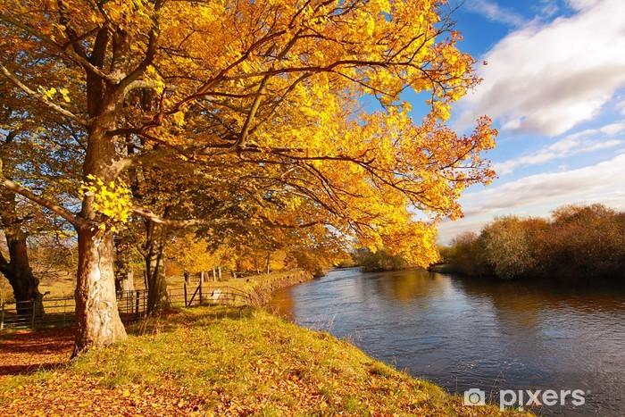 Naklejka Pixerstick Piękna jesień w parku, Szkocja - Tematy
