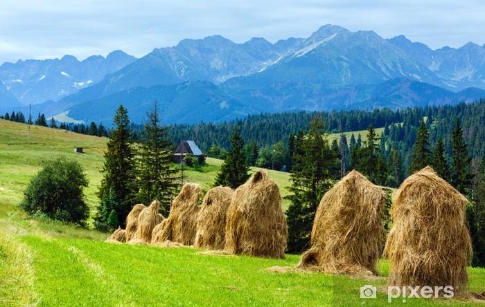 Fototapeta winylowa Widok letnich górskich kraju - Tematy