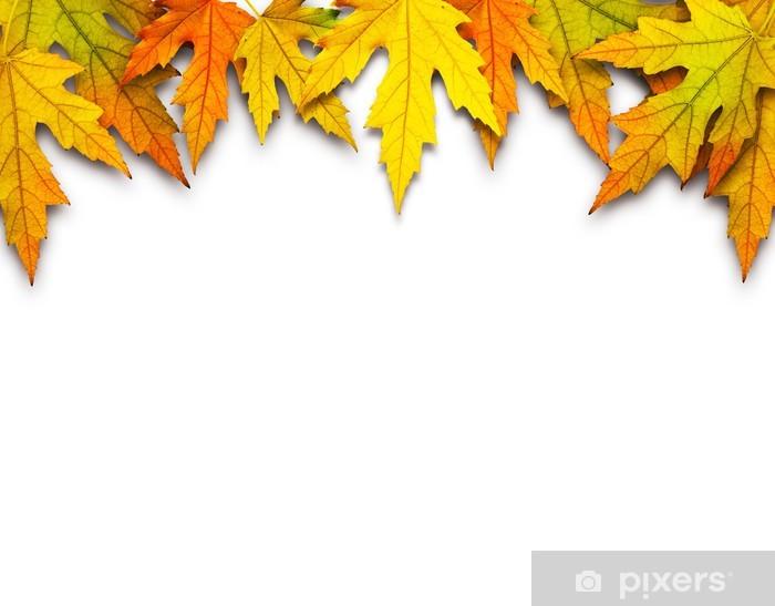 autumn leafs Vinyl Wall Mural - Backgrounds