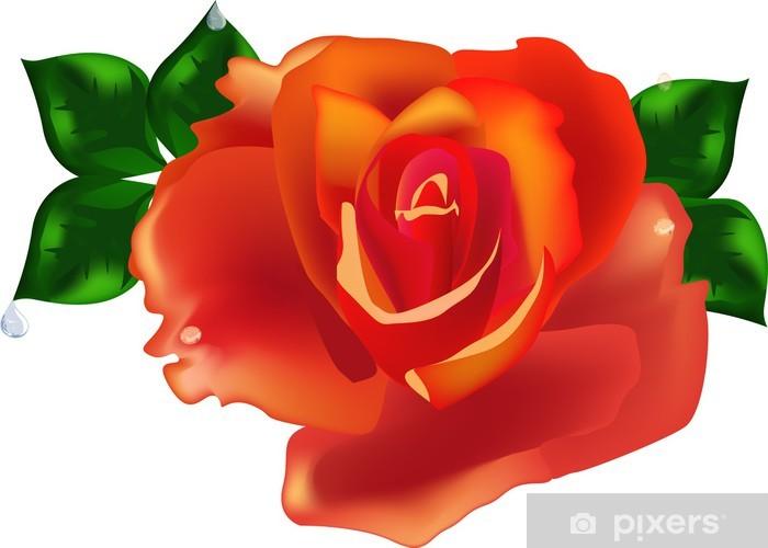 Nálepka Pixerstick Oranžové růže květ s listy a pokles - Témata