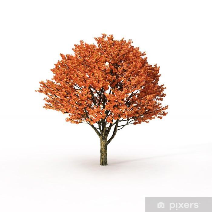 Nálepka Pixerstick Podzimní strom na bílém pozadí - Roční období