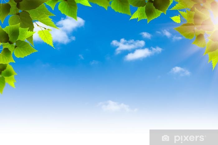 Carta Da Parati In Vinile Fogliame Verde Contro Il Cielo Azzurro Sfondi Naturali