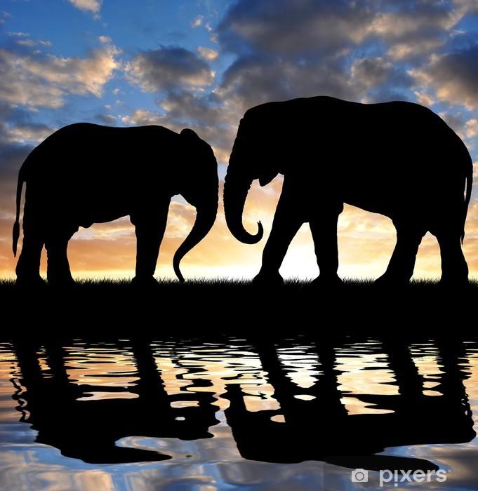 Vinyl Fotobehang Het silhouet van olifanten in de zonsondergang - Thema's