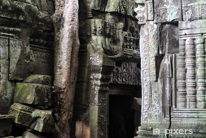 Papier peint vinyle Jungle temple au Cambodge - Asie