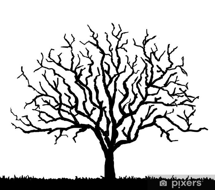 Nálepka Pixerstick Černá silueta stromu bez listí, vektorové ilustrace - Stromy a listí