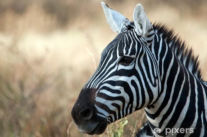 Sticker Pixerstick Zebra dans le Parc national du Serengeti, en Tanzanie - Thèmes