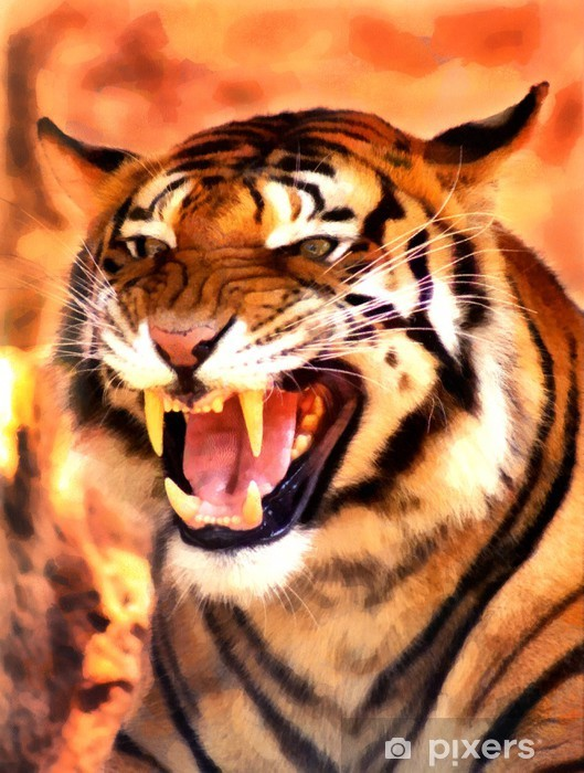 Kızgın Yüz Tiger Portre Boyama Duvar Resmi Pixers Haydi
