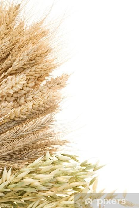 Vinyl Fotobehang Rijpe oren van graan op wit wordt geïsoleerd - Maaltijden
