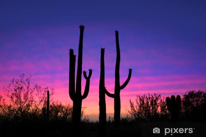 Carta da Parati in Vinile Alti piante di cactus contro il cielo di sera - Cielo