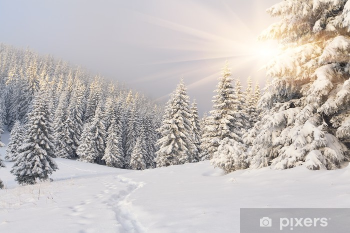 Fototapeta zmywalna Malowniczy zimowy krajobraz w górach -