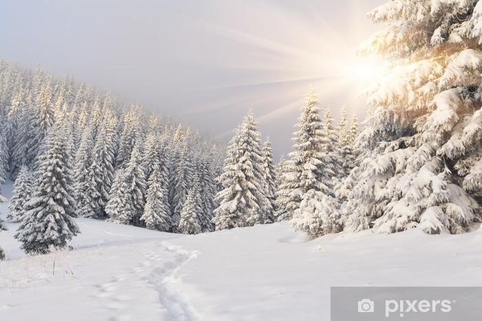 Samolepicí fototapeta Krásná zimní krajina v horách. Východ slunce -
