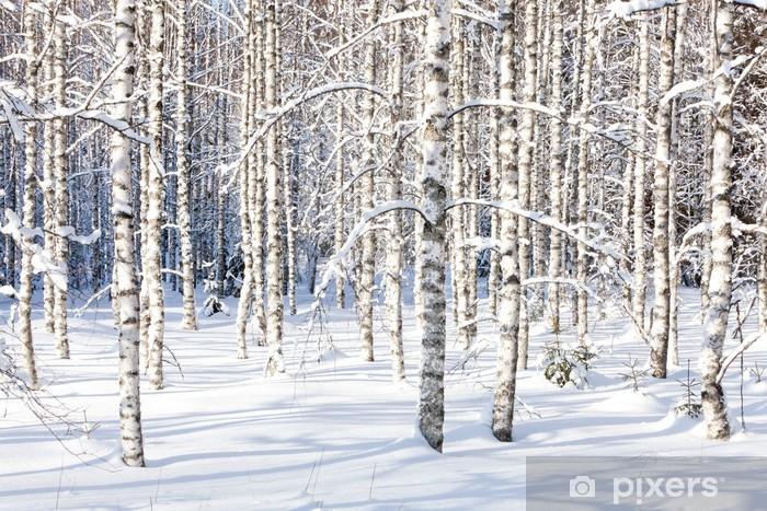 Snowy birch trunks Vinyl Wall Mural - Styles