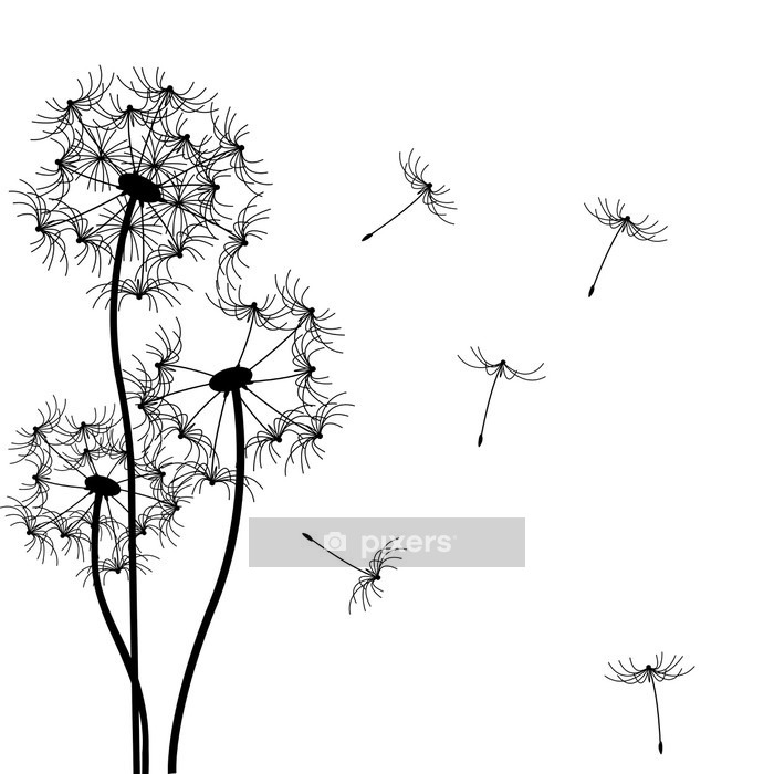 vector dandelion Wall Decal - Wall decals