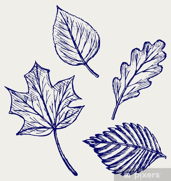 Collection Autumn Leaves Doodle Style Wall Mural Pixers We Live To Change