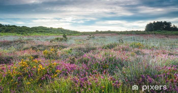 Naklejka Pixerstick Kwiaty wrzosu, łąka kwiatowa - Wakacje