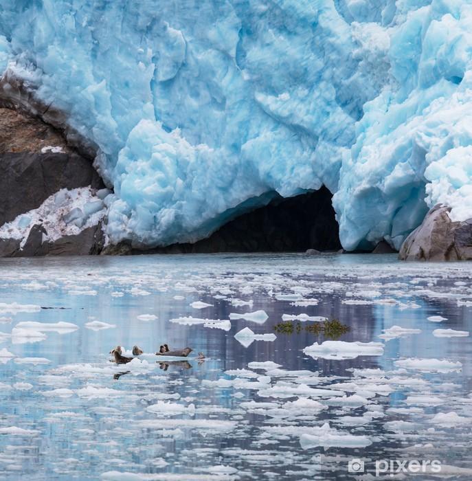 Vinyl-Fototapete Gletscher auf Alaska - Unterwasserwelt