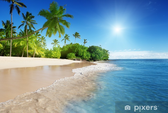 Vinilo Pixerstick El mar caribe y las palmas - Temas