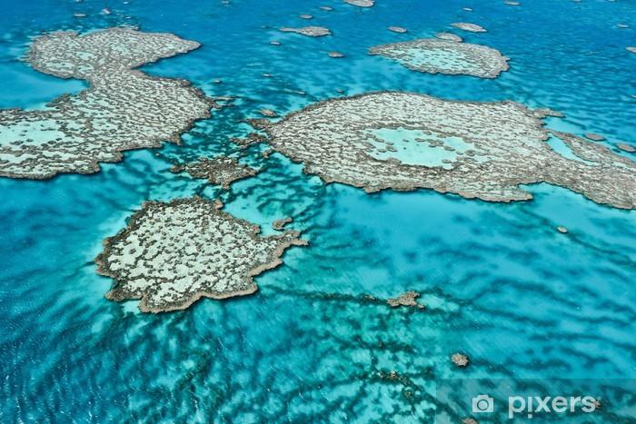 Fotomural Estándar La Gran Barrera de Coral en Queensland, Australia. - Arrecife de coral