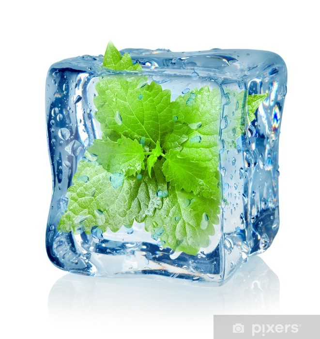 Papier peint vinyle Cube de glace et menthe - Repas