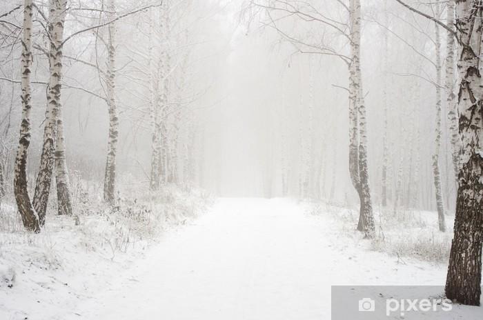Vinylová fototapeta Ráno v zimě dřeva - Vinylová fototapeta