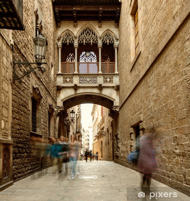 Bridge at Carrer del Bisbe in Barri Gotic, Barcelona Vinyl Wall Mural - Themes