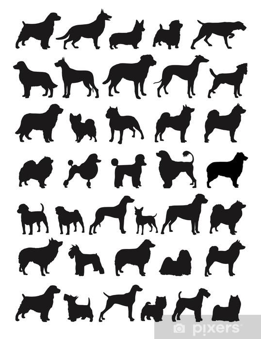 Fototapeta winylowa Popularne rasy psów ilustracja - Ssaki