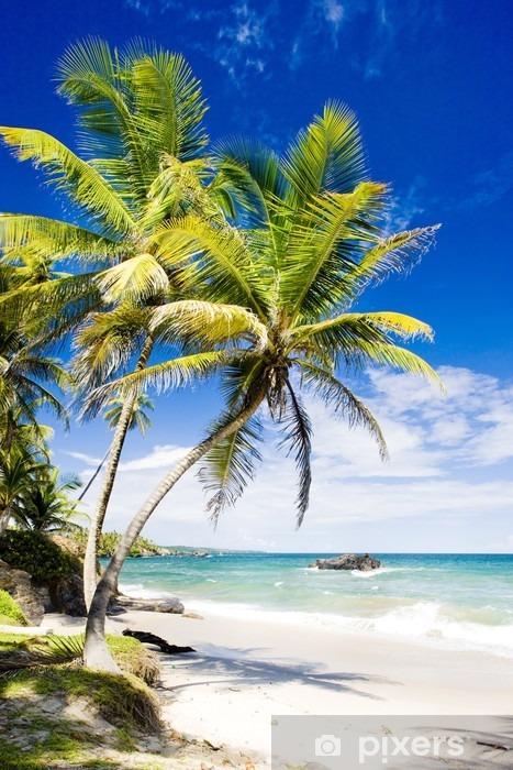 Vinilo Pixerstick Cumana Bay, Trinidad - Temas