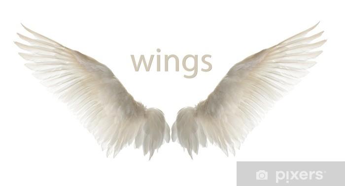 Vinyl Fotobehang Natuurlijke witte gans vleugels. Isolatie. - Denkbeeldig dieren