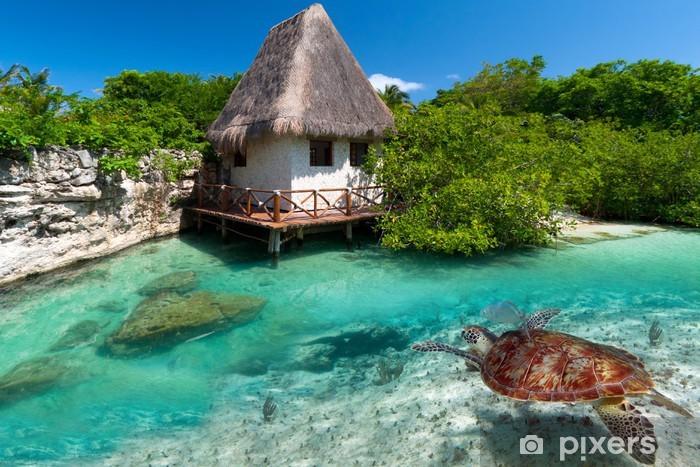 Pixerstick Sticker Caribische Zee landschap met groene schildpad in Mexico - Amerika