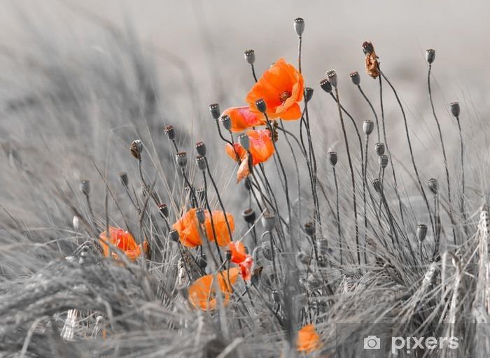Poppies against a gray background Pixerstick Sticker -