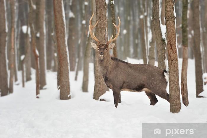 Pixerstick Sticker Deer - Thema's