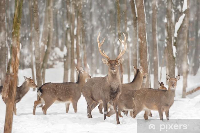 Deer Vinyl Wall Mural - Styles
