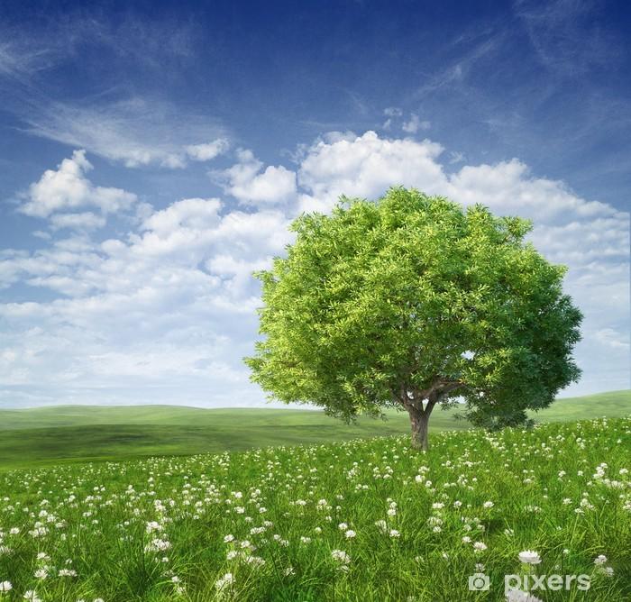 Naklejka Pixerstick Letni krajobraz z zielonym drzewem - Łąki, pola i trawy