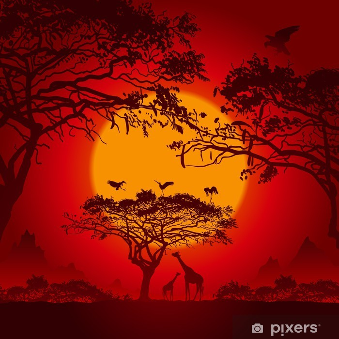 Papier peint vinyle Coucher de soleil africain - Thèmes