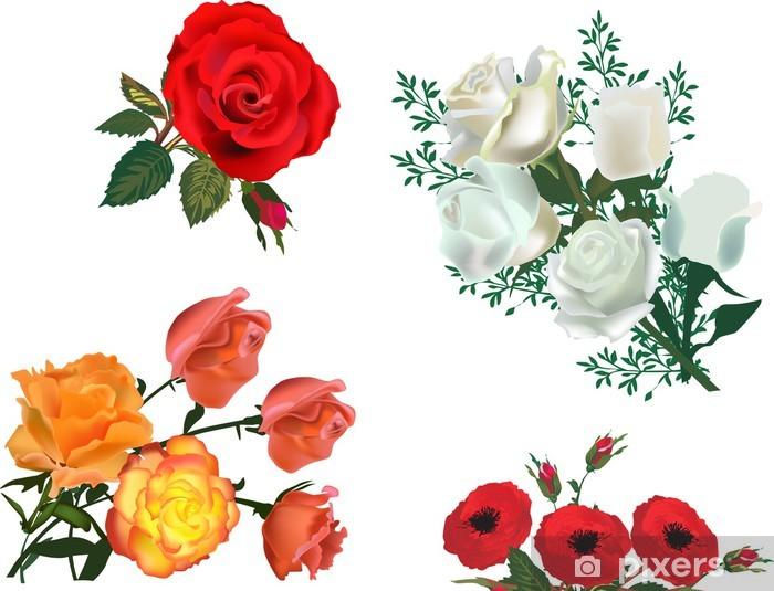 Fototapeta winylowa Pojedyncze kwiaty różne róże - Kwiaty