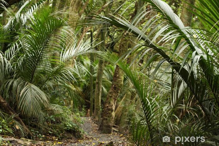 Palmer i regnskov i New Zealand Vinyl fototapet -