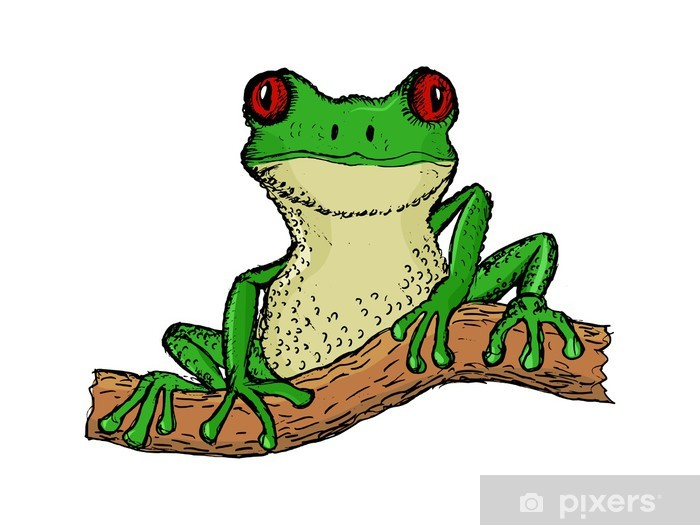 Hand Drawn Vector Cartoon Illustration Of Tree Frog Wall Mural Pixers We Live To Change Download this cartoon frogs vector illustration now. hand drawn vector cartoon illustration of tree frog wall mural pixers we live to change