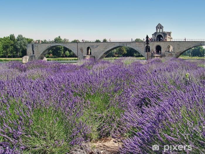 Naklejka Pixerstick Pont d avignon - Europa
