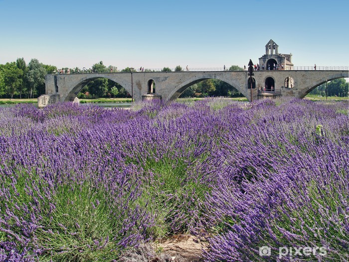 Vinilo Pixerstick Pont d avignon - Europa