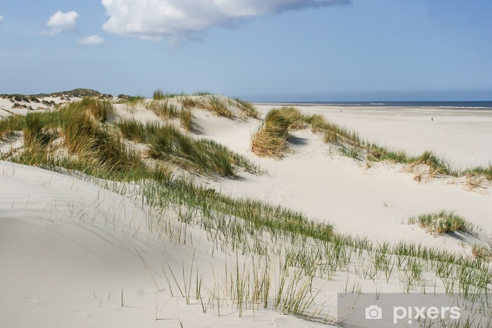 Sand dunes at the coast of the Netherlands Pixerstick Sticker - Themes