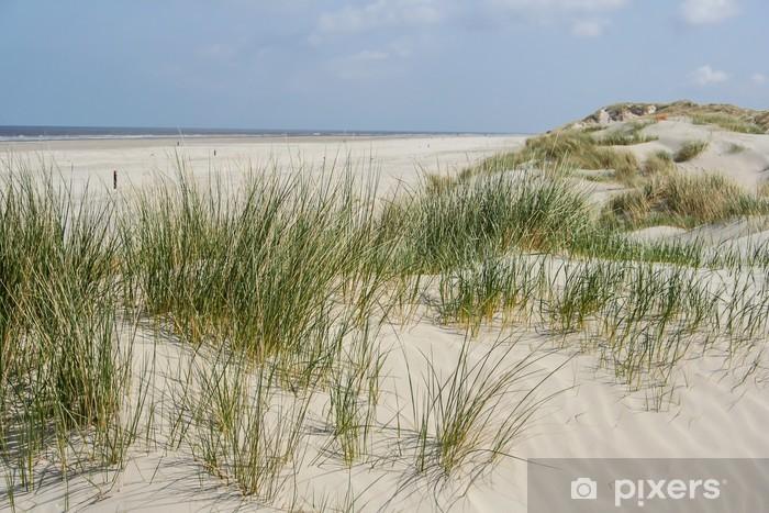 Fototapeta winylowa Wydmy na wybrzeżu Holandii - Holandia