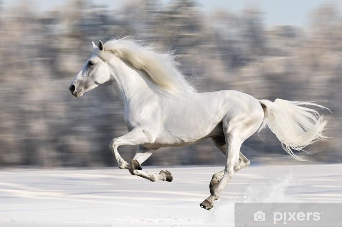 3 reasons to choose Kagura White Horse Inn