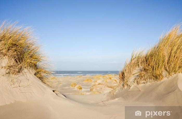 Pixerstick Sticker Duinen, gras, strand en zee - Thema's