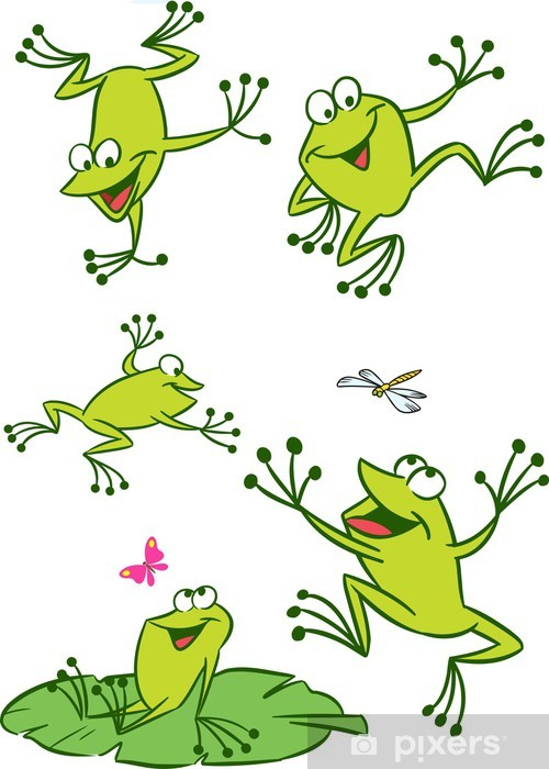 few frogs Vinyl Wall Mural - Other Other