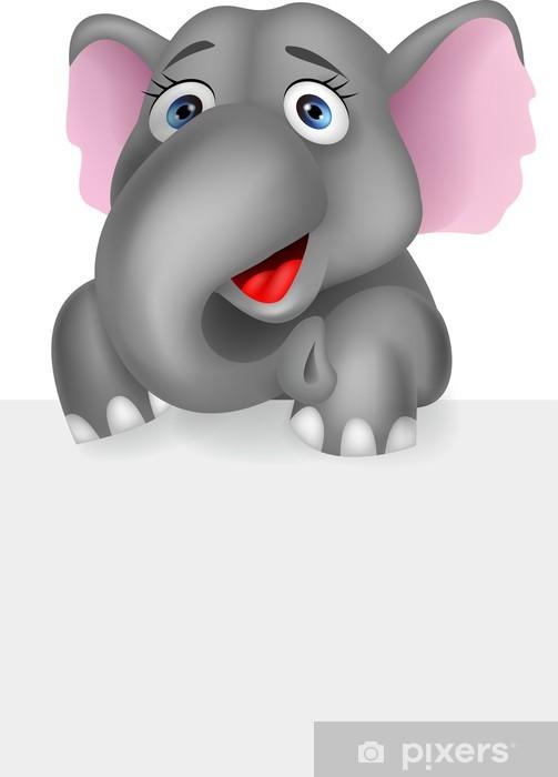 Fotomural Estándar Elefante con la muestra en blanco - Mamíferos