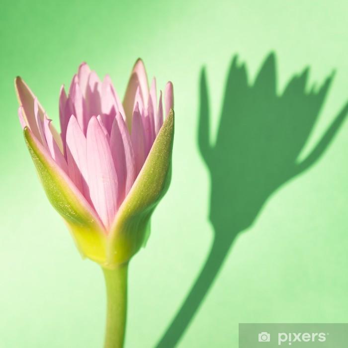 Papier peint vinyle Lotus rose avec un fond vert - Fleurs