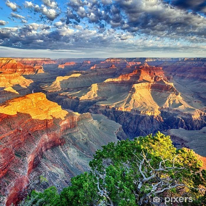 Vinil Duvar Resmi Grand Canyon sabah ışığı -