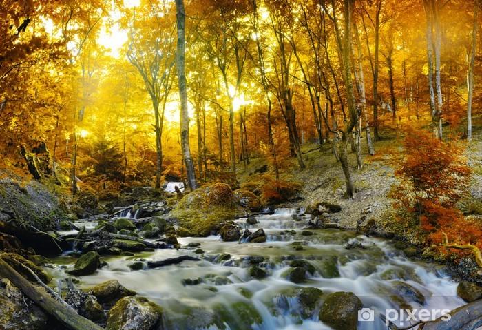 Fototapet av Vinyl Hösten bäck skogen med gula träd - Destinationer